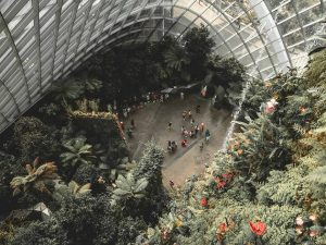 Singapore's Iconic Buildings: 7 Architectural Wonders of Singapore